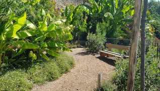 Jardin suspendu au-dessus de l'office du tourisme